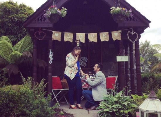 surprise picnic proposal in ireland.